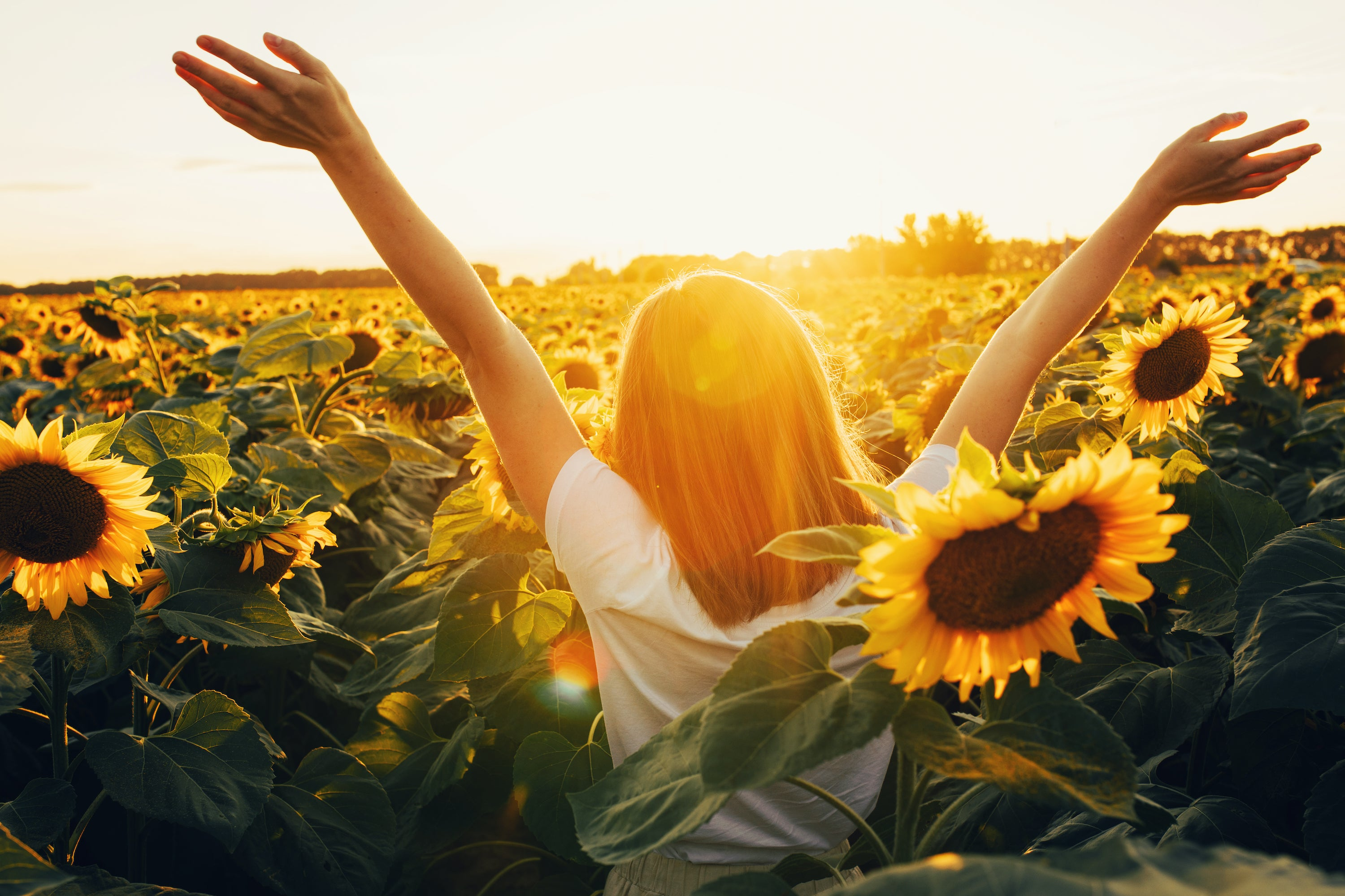 woman standing with arms raised in field of sunflowers on a sunny day