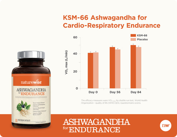 Ashwagandha for Endurance Another Chart