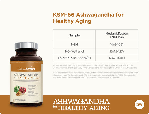 Ashwagandha for Healthy Aging Fact 2