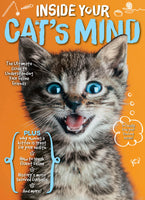 Inside Your Cat's Mind: The Ultimate Guide to Understanding Your Feline Friends
