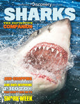 Discovery: Sharks— The Definitive Companion