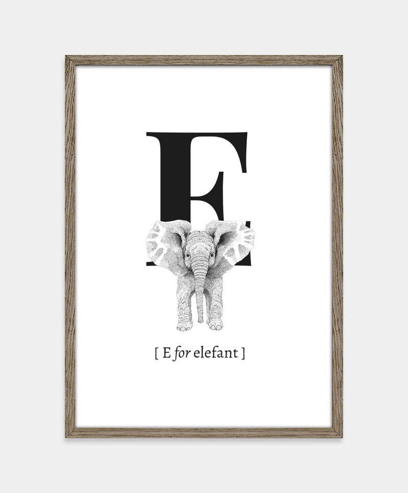 ★ E for elefant (str. A5)
