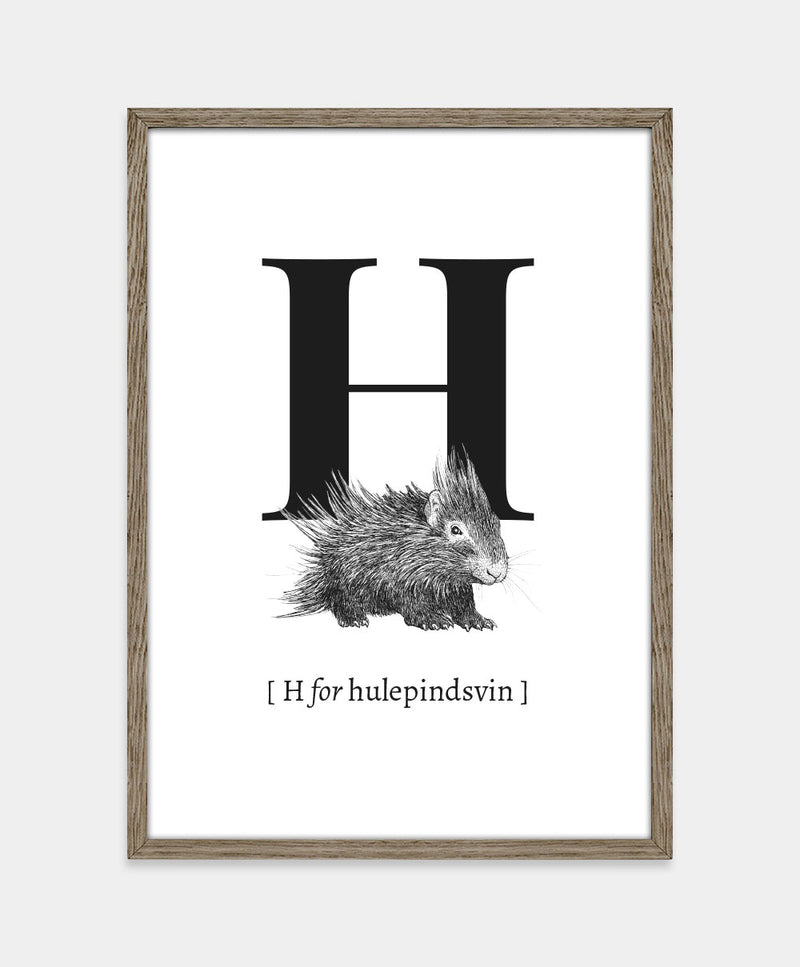 H for hulepindsvin