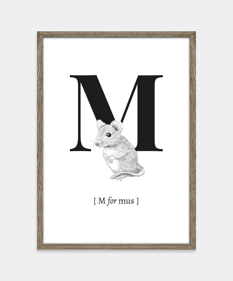 M for mus