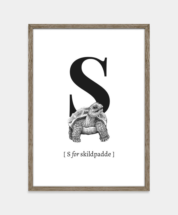 S for skildpadde