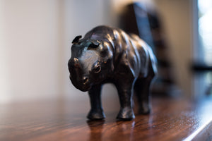 Decorative Leather Rhino