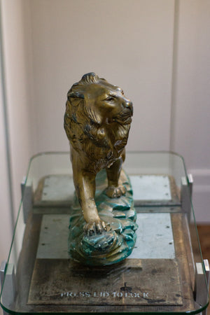 Plaster Lion 20th Century