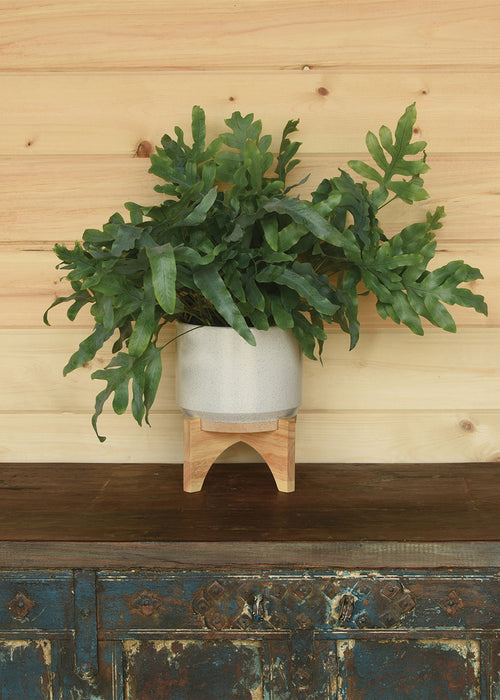 Ames Planter w/ Wood Stand