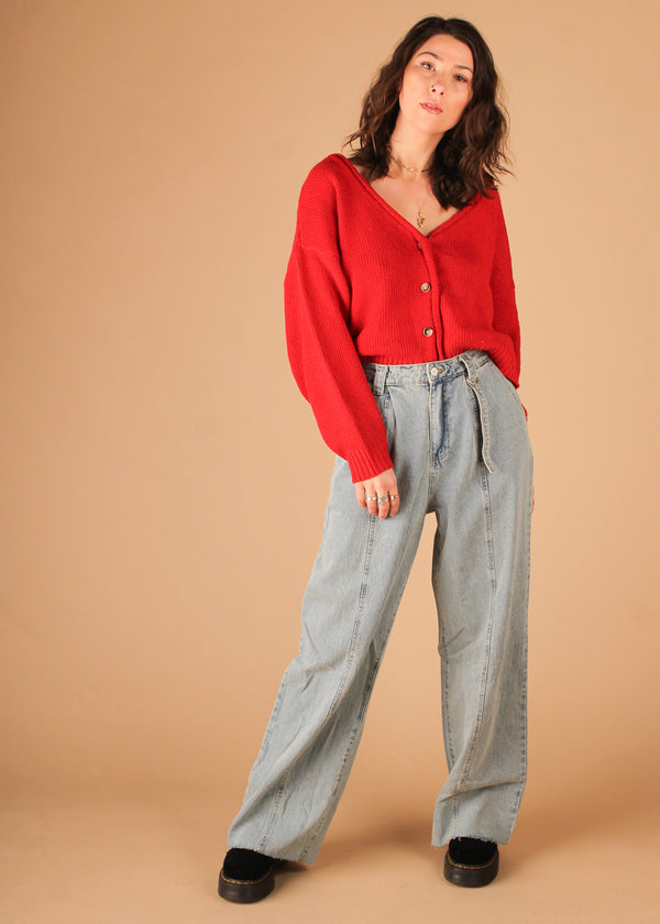 Christine Wide Leg Denim Pants