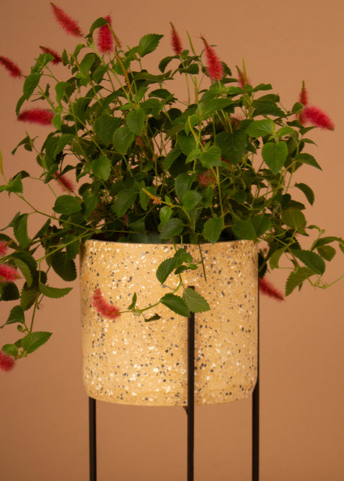 "9"" Round x 16-1/2""H Cement Terrazzo Planter w/ Metal Stand"