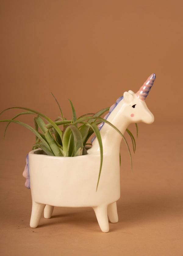 "Lolly Unicorn Planter 5.75"" x 3"" x 7"""