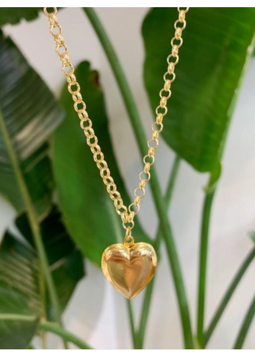 Link Chain Heart Locket Necklace