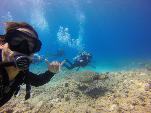 The Hawaiian Islands are rated by Padi as one of the Top 5 Places to Scuba Dive with Sea Turtles