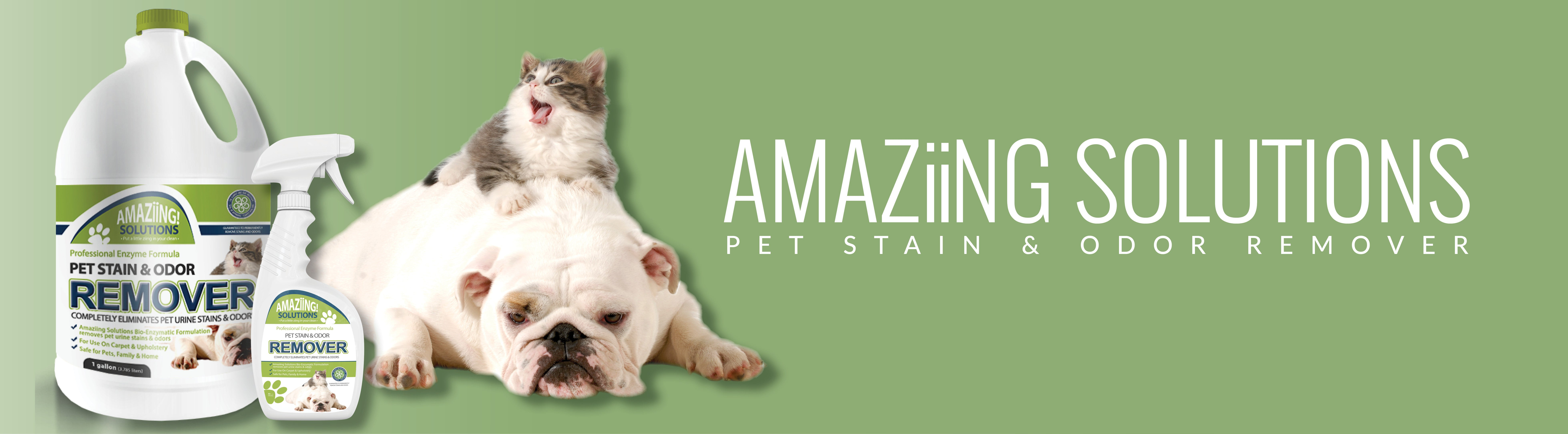 Amaziing Solutions Pet Stain & Odor Remover