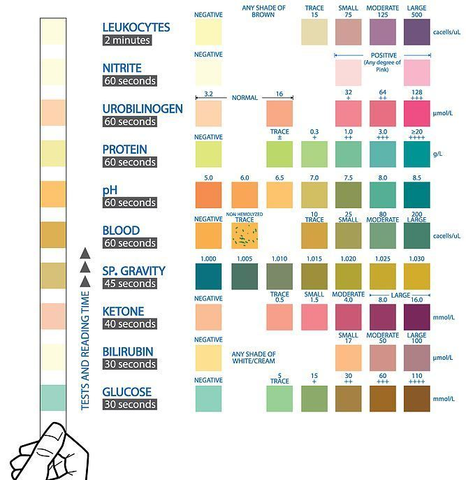 color chart for 10 parameter test strips
