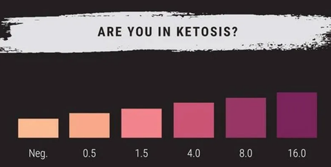 Are You In Ketosis?
