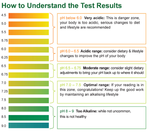 How to Understand the Test Results