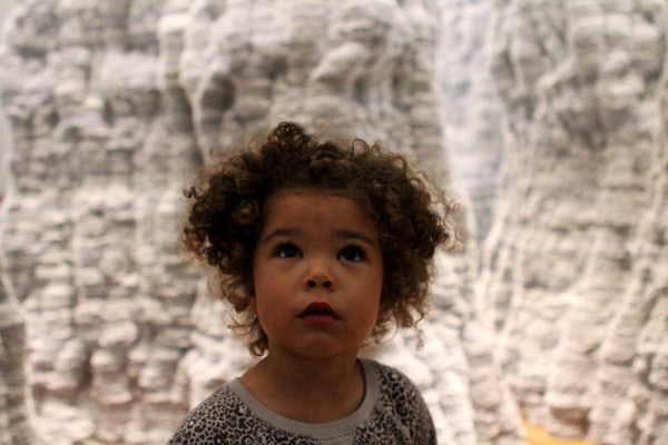 Wonder At The Renwick Gallery | Little Nomad