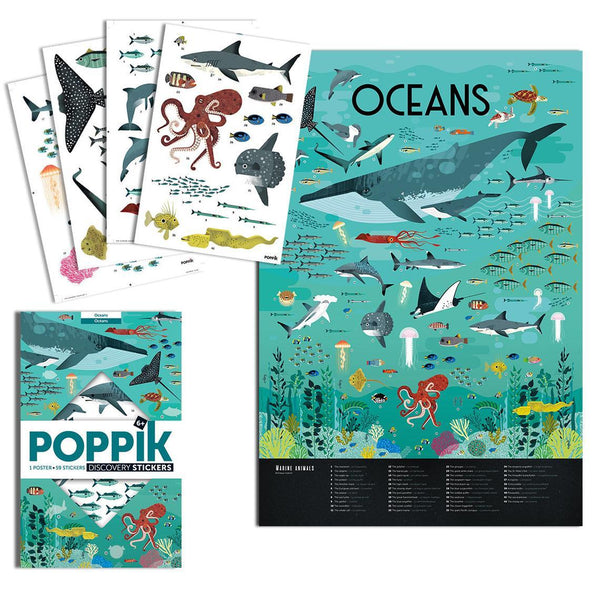 Animals of the Ocean Discovery Sticker Poster - Little Nomad