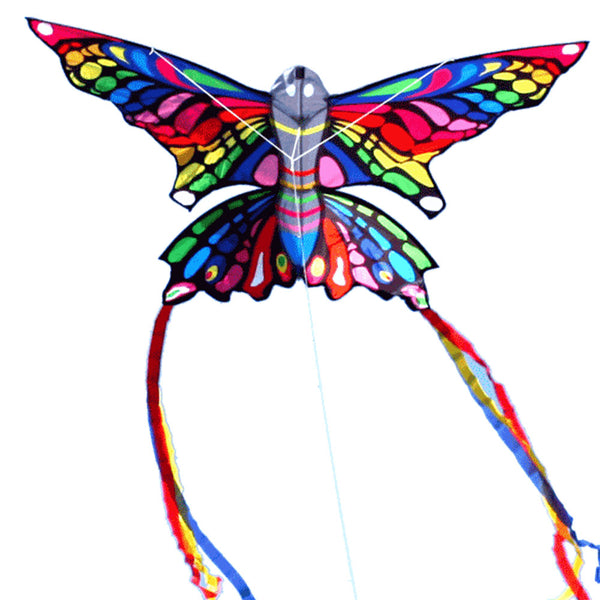Rainbow butterlfy kite