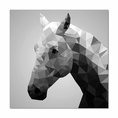 Horse Photo On Canvas
