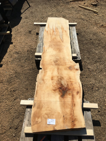 Sycamore boards 5-6-18
