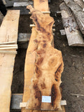 Spalted, bark inclusion Sycamore 22-6-18