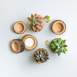 Succulent Wedding Favours - Wooden Holder Only