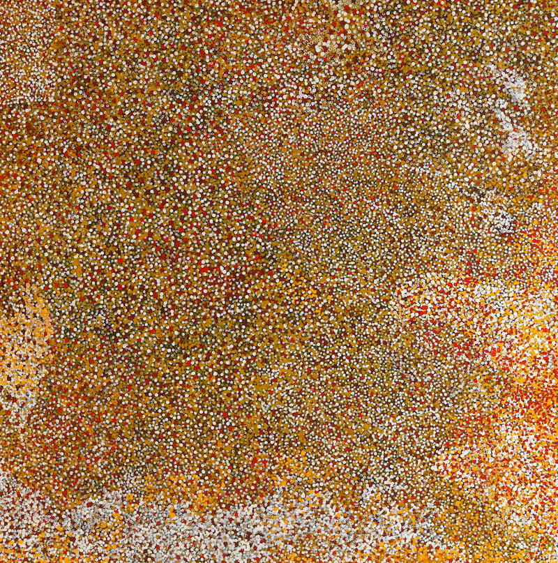 Polly Ngale (Kngale), 'Wild Plum', 2003, 03E010, 120x120cm - Delmore Gallery