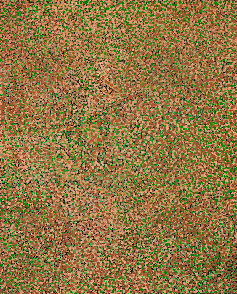 Emily Kame Kngwarreye, 'Emu All Over', 1990, OL07, 120x151cm