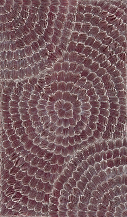 Joy Kngwarreye Jones, Painting 10B053, 2010, 90cm x 150cm - Delmore Gallery