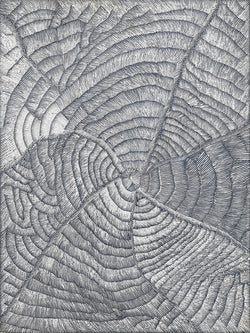 Lily Sandover Kngwarreye, Painting 99K002, 1999, 90cm x 120cm - Delmore Gallery