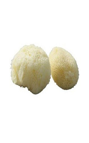 Beaming Baby Org Sea Sponge Beauty Kit 1pair - Vitalityfoods