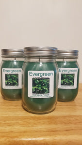 Evergreen Aromatherapy Candle