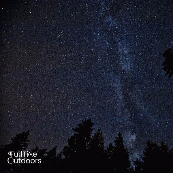 Image of Perseid Meteor Shower with Milky Way Visible