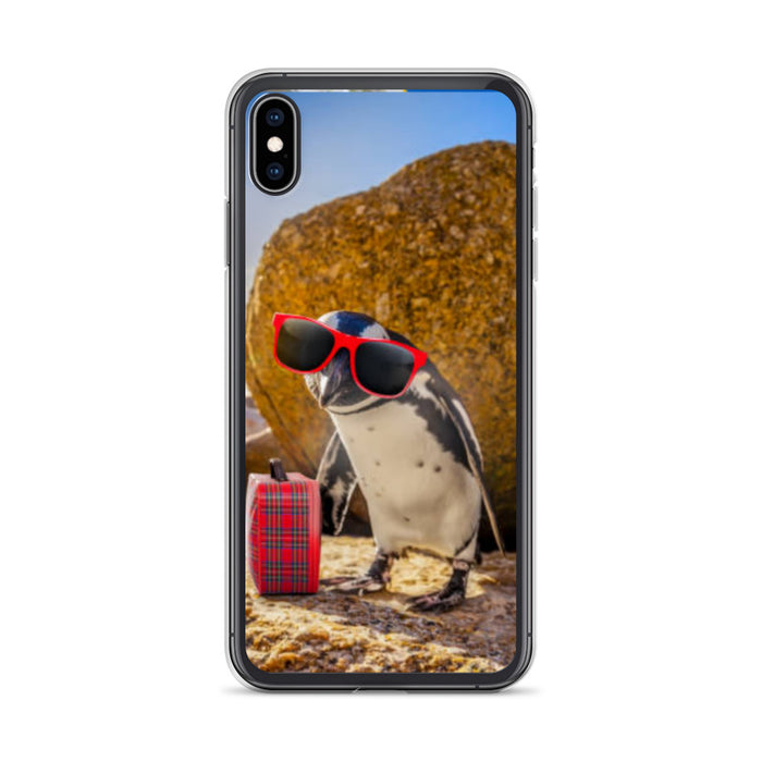 Boulders Beach V1 iPhone Case