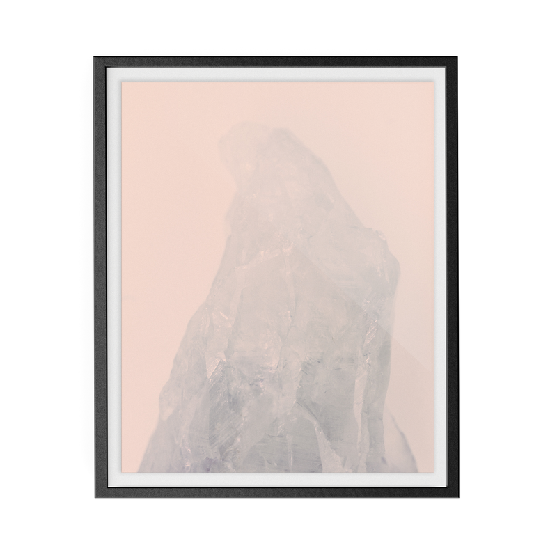 Amethyst Rose (i) photographic print