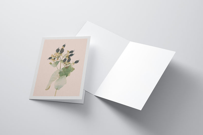 Arid Botanics Notecard (No.1)