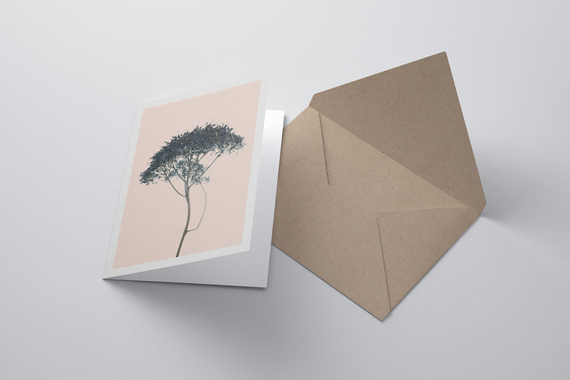 Arid Botanics Notecard (No.2)