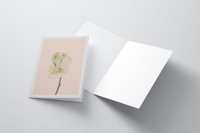 Arid Botanics Notecard (No.3)