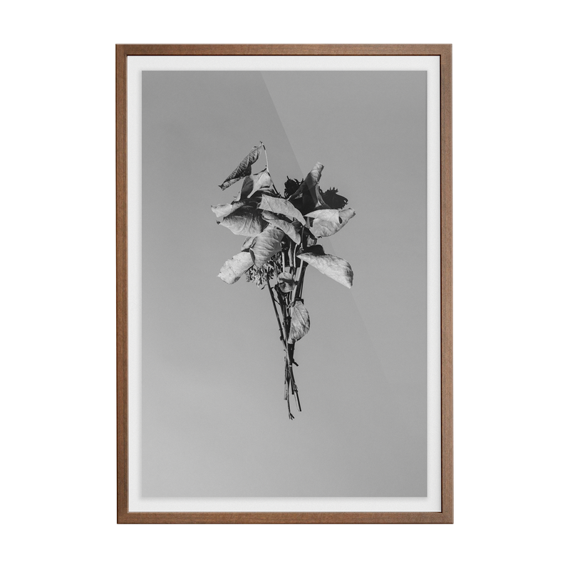 Begin Again (Monotriptych 1) photographic print