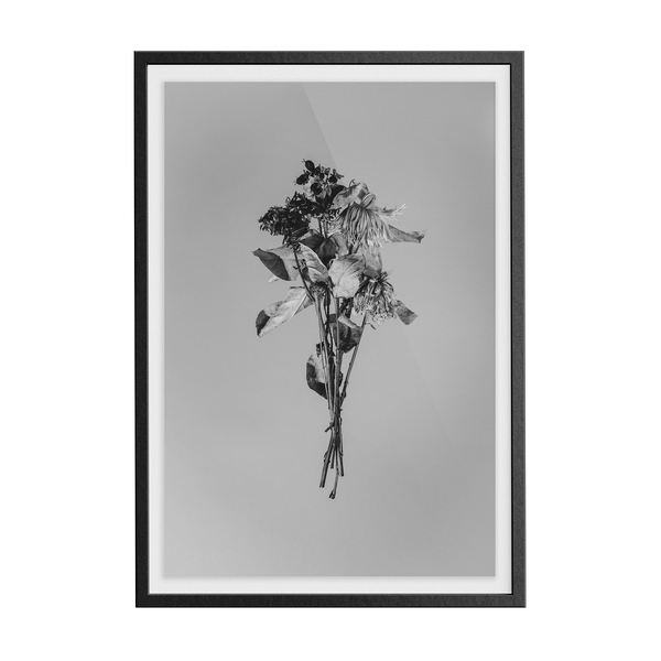 Begin Again (Monotriptych 2) photographic print