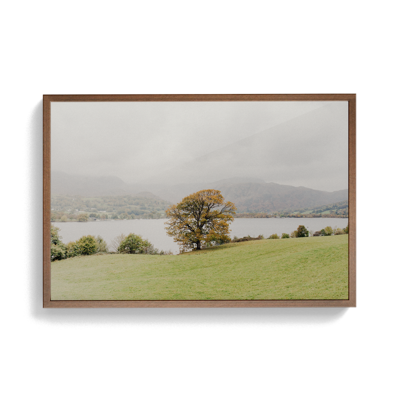 Coniston: Swallows photographic print