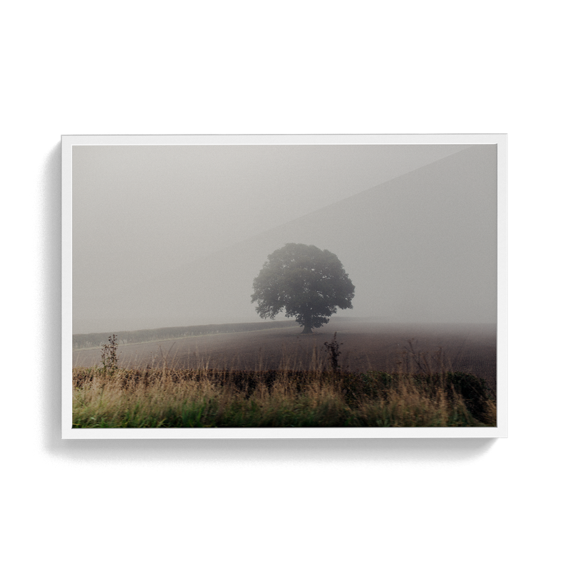 Coniston: The Vale photographic print