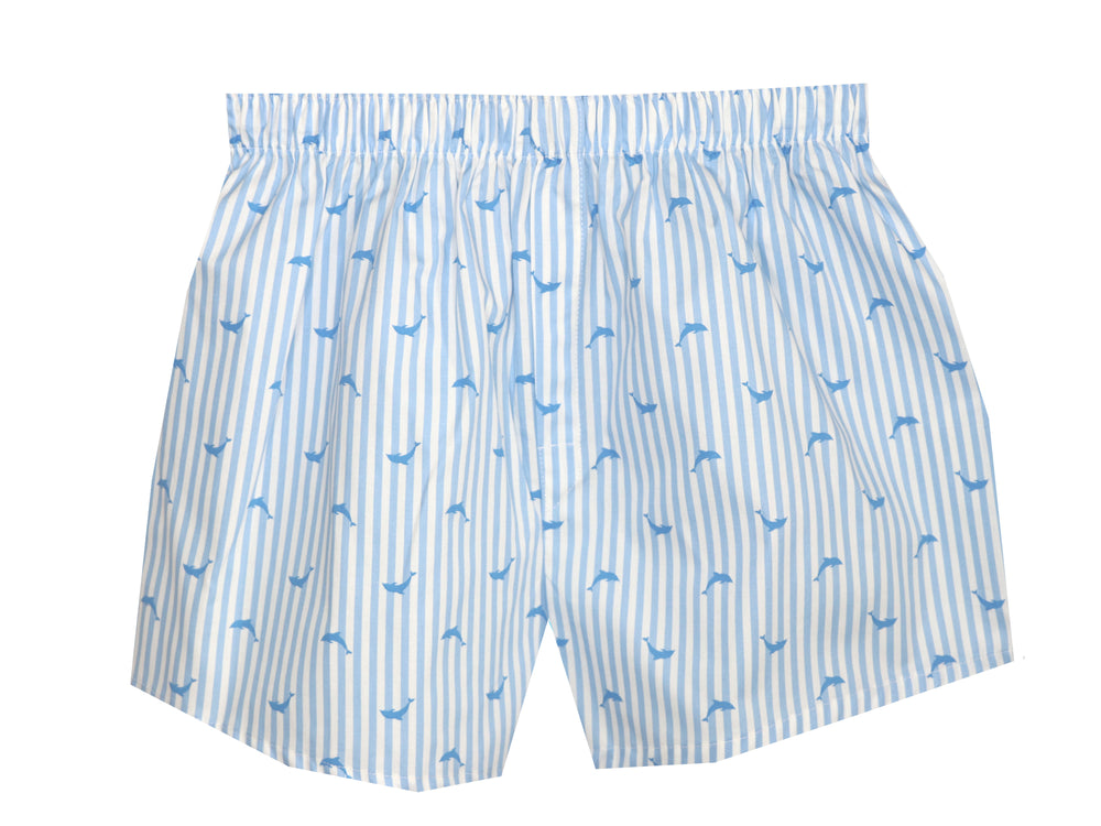 Boxers blue stripe fish
