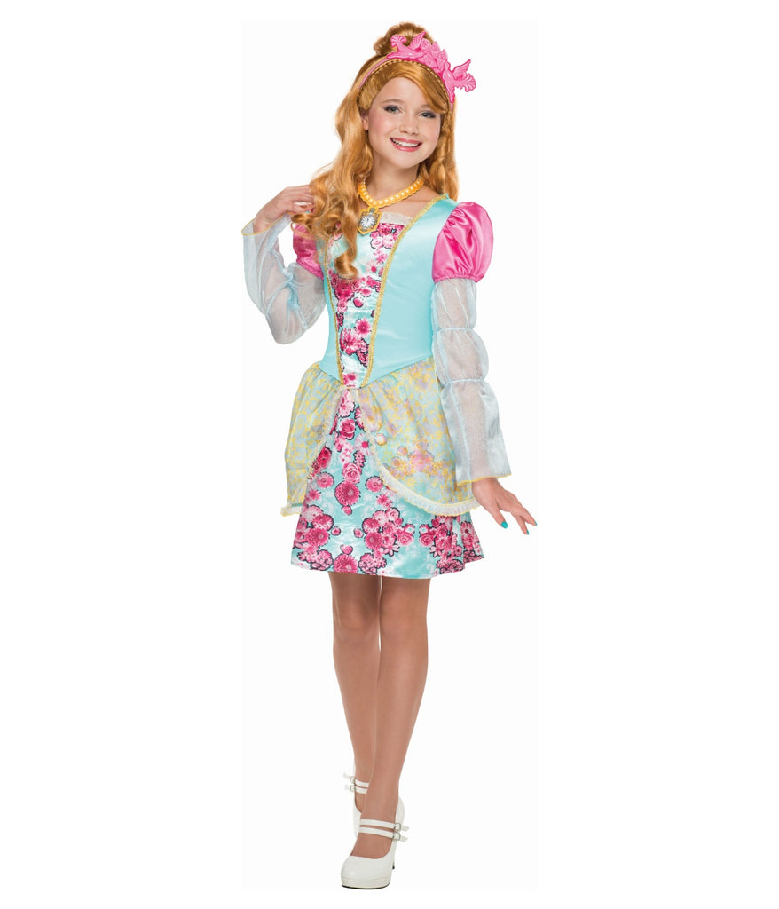 Ever After High Ashlynn Ella Costume - Nevermore Costumes