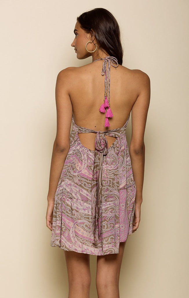 MIDNIGHT WANDERER HALTER MINI