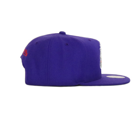 Toronto Raptors Wool Solid Snapback Hat - Purple