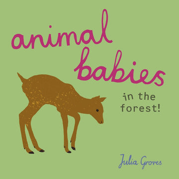 animal babies in the forest