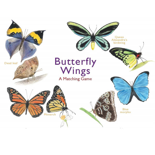 butterfly wings; a matching game